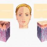 10 храни, които ще забавят стареенето на кожата ви за максимално дълго време