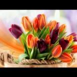 Хороскоп за днес, 18 март: ТЕЛЕЦ - чудесен ден, БЛИЗНАЦИ - материални успехи, ВЕЗНИ - изненадващи новости