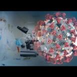 Дойде най-лошата новина от началото на пандемията от коронавирус