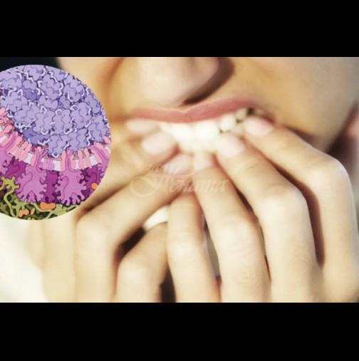 Този вреден навик увеличава риска от зараза с коронавирус многократно - забравете за него!