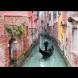 Чудо в Италия - заради карантината каналите на Венеция се напълниха с лебеди и делфини (Снимки):