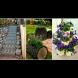17 ярки идеи за двора и вилата, които ще превърнат мястото в късче от Рая (Снимки):