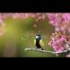 Хороскоп за утре, 29 март: ОВЕН - вярвайте само на себе си, СКОРПИОН - любов и страст, СТРЕЛЕЦ - ново изпитание