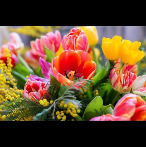 Хороскоп за днес, 9 април: ОВЕН - невероятна среща, БЛИЗНАЦИ - промяна в любовния живот, РИБИ - ще сте обичани и щастливи