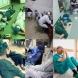 Лекарите, които работят от януари-83 лекувани, излекувани 30, нито един смъртен случай!