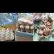 Бюджетни и красиви идеи за великденска украса от корите за яйца (Снимки):