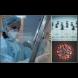 Сензационно от БАН: разработваме ваксина срещу коронавируса, това е съвсем нова идея!