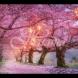 Хороскоп за утре 7 април-ДЕВА В плен на емоциите, БЛИЗНАЦИ Силен късмет