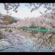 Хороскоп за 3 април 2020 г.-Скорпион-Мечтано предложение, Риби положително отношение
