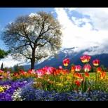 Хороскоп за днес, 9 май: ОВЕН - специален ден, РАК - пазете тайните си, ВЕЗНИ - заслужено щастие