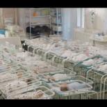"""46 новородени във """"фабрика за бебета"""" останаха блокирани в хотел заради коронавируса"""