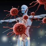 Какви витамини и минерали трябва да взимаме, ако искаме силна имунна система тази пролет