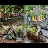 24 ярки идеи за цветята в двора и градината (Снимки):