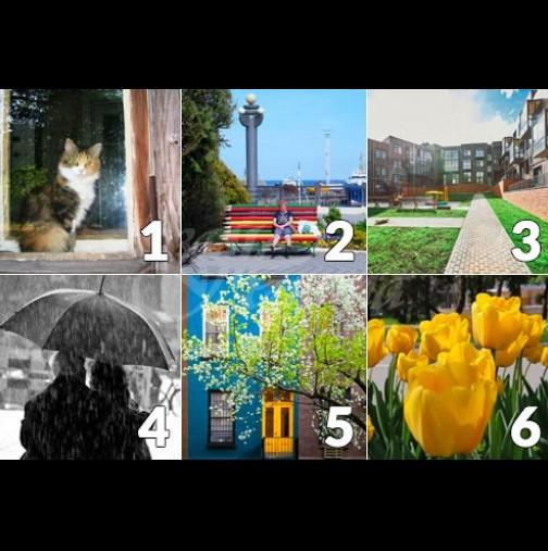 Изберете снимка и разберете какво ви е подготвила Кармата през юни 2020 г.