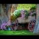 Ефектни цветни идеи за градината и двора (Снимки):