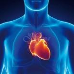 Професор кардиолог-Как може да се разпознаят началните симптоми на инфаркт