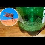 Най- простият капан за комари и няма да ви ухапе и един тази година!
