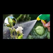 25 изпробвани начина как да разкарате листните въшки завинаги- някои решения лежат в хладилника ви