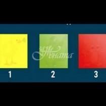 Какво животно видяхте първо в цветните квадрати