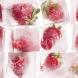 Топ 3 най-добри начини за замразяване на ягоди за зимата и да запазите вкуса и вида им