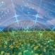 Летен хороскоп за 2020-Зодия Водолей ще усети шепота на богатството и късмета, Зодия Телец-Късмет в любовта, зодия Скорпион- събития