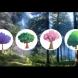 Кое от посочените дървета бихте избрали