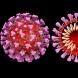 Разбра се, че някои хора имат имунитет срещу коронавируса още от 2003 г.