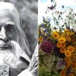 Най-силните билки за сърце в рецептите на Петър Дънов
