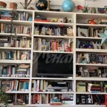 Открийте котката, която се е скрила умело в библиотеката