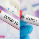От свински грип болните са били 1,5 млрд. души, а от COVID - 11 млн.-Излишна ли е паниката и с каква цел се създава