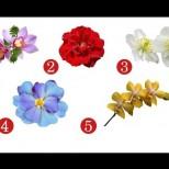 Изберете цвете и вижте отговора!