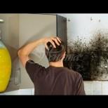 Ефективно средство за премахване на мухъл, чрез което гъбичките изчезват и вече не се появяват