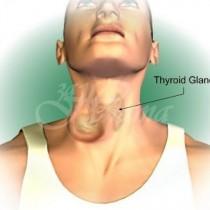 Продуктите, които съсипват щитовидната жлеза