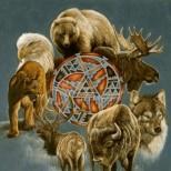 Всяка зодия има свое духовно животно-покровител! Виж кой те закриля според тотемния хороскоп: