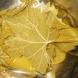 Взех няколко лозиви листа и ги загрях в микровълновата за 30 секунди и сега цяла зима ще си ям пресни сармички