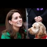 От двореца отново порязаха жестоко Кейт - ето какво не ѝ е позволено заради паметта на Даяна (Снимки):