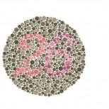 Кое число виждате на снимката? Този тест ще помогне да се открият проблеми със зрението
