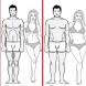 Колко трябва да тежим? Най- новата таблица за тегло