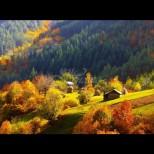 Хороскоп за днес, 2 октомври: БЛИЗНАЦИ - устремени към успеха, ДЕВА - огнена страст, РИБИ - шанс от звездите