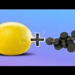 4 топ начини за премахване на миризма в хладилника-активен въглен и лимон-тандем, който ще се хареса на всяка домакиня