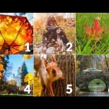 Изберете картинка и разберете какво ви очаква през октомври 2020 г.