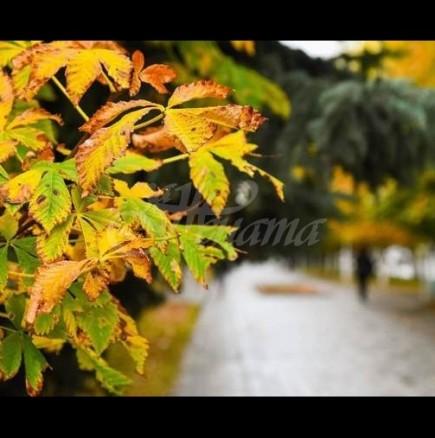"""Есенното равноденствие на 22 септември ще раздели живота на 3 зодии на """"преди"""" и """"след\"""
