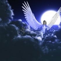 През целия октомври ТРИ знака на зодиака ще живеят под крилете на Ангели: