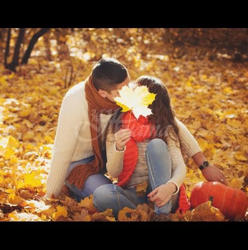 Есента оплита в любовна мрежа тези три зодии - до края на годината срещат Голямата си любов!