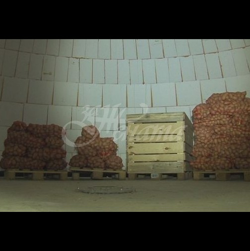 Компютърен специалист сади картофи и ги раздава на бедните с тонове-Видео