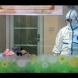 Хиляди се разболяха от нов вирус в Китай