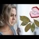 Три магически свойства на дафиновите листа