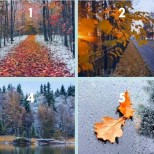 Изберете снимка и разберете какво е подготвила за вас Съдбата тази есен