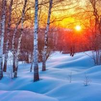 Каква зима ни очаква? Проф. Рачев с прогноза за Сиромашкото лято и очакван сняг