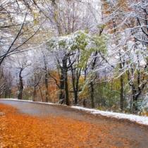 Прогноза за времето до края на ноември-Графика на валежите